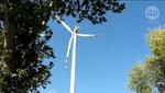 Czy warto rozwijać energetykę wiatrową?